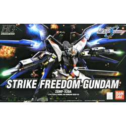 HG Strike Freedom (34)