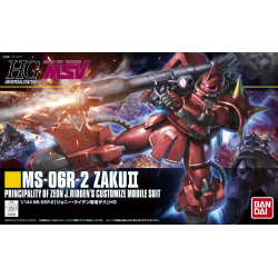 HG UC MS-06R-2 Zaku II (166)