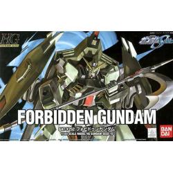 HG Forbidden Gundam (10)