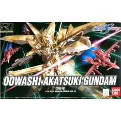 HG Oowashi Akatsuki Gundam (40)