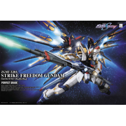 PG Strike Freedom Gundam 1/60 Scale