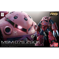 RG Z'GOK Char Custom MS-07S