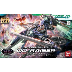 HG 00 Raiser (38)