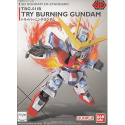 SD BB EX-Stardard Try Burning (011)