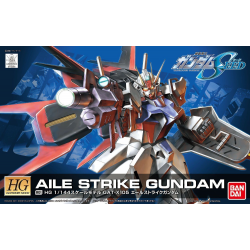 HG Aile Strike (R01)