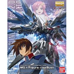 MG Freedom Gundam Ver. 2.0 & Kira Yamato