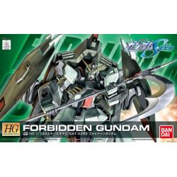 HG Forbidden Gundam (R09)