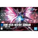 HG CE Destiny Gundam (224)
