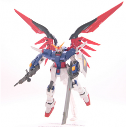 Destiny Gundam - Cosmic Region 7004