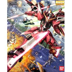 MG Infinite Justice Gundam 1/100
